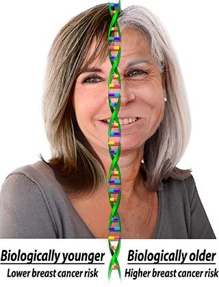 biological_age.jpg