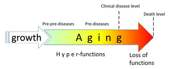 pre-pre-disease.jpg