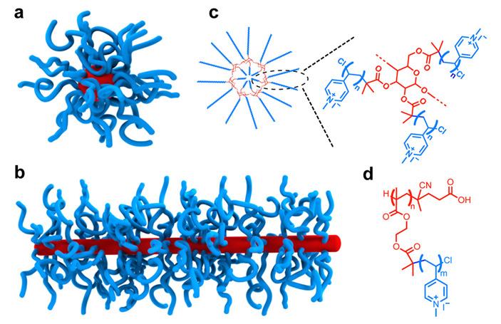 Phage-Mimicking1.jpg