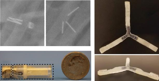 Microneedle-Drug-Delivery.jpg